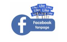 Hướng Dẫn Tạo Fanpage Facebook Chuẩn SEO Chỉ Trong 6 Bước Đơn Giản